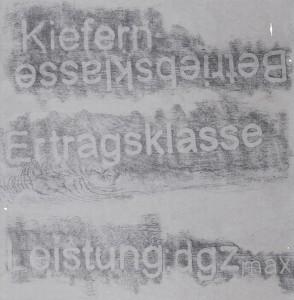 Detail-III_Forstwirtschaftslyrik_2011