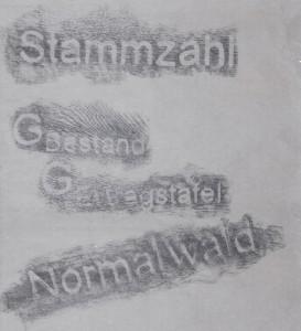 Detail-I_Forstwirtschaftslyrik_2011