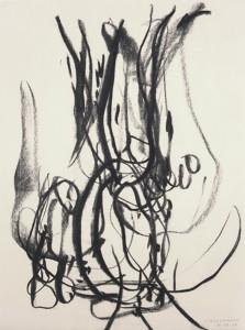 Erot. Zeichnung VII_2008_Kohlezeichnung_40x50