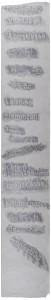 """""""Forstwirtschaftslyrik""""_2013, Frottage auf Japanpapier_3,2m x 50cm"""